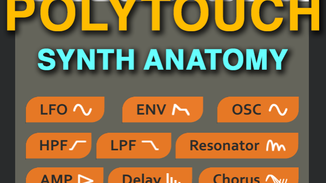 Synth Anatomy PolyTouch